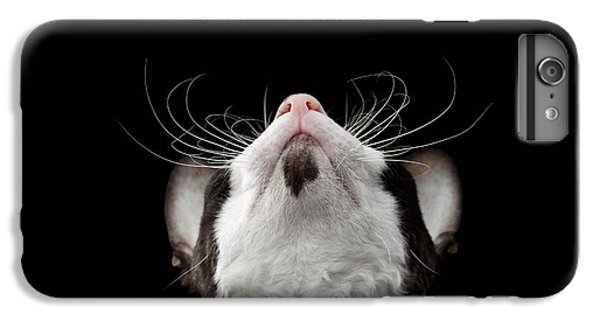 Cat iPhone 6 Plus Case - Closeup Portrait Of Cornish Rex Looking Up Isolated On Black  by Sergey Taran