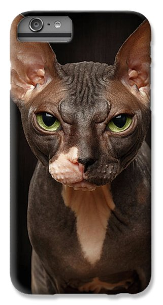 Cat iPhone 6 Plus Case - Closeup Portrait Of Grumpy Sphynx Cat Front View On Black  by Sergey Taran