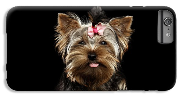 Dog iPhone 6 Plus Case - Closeup Portrait Of Yorkshire Terrier Dog On Black Background by Sergey Taran