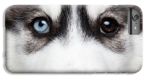 Dog iPhone 6 Plus Case - Closeup Siberian Husky Puppy Different Eyes by Sergey Taran