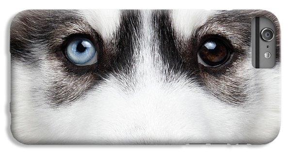 Closeup Siberian Husky Puppy Different Eyes IPhone 6 Plus Case