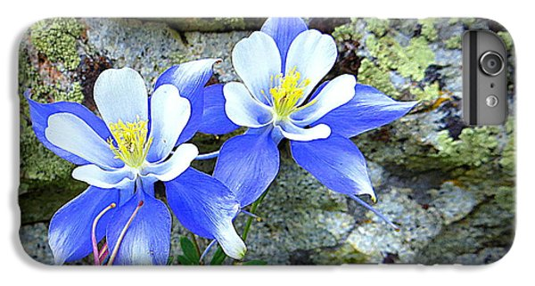 IPhone 6 Plus Case featuring the photograph Colorado Columbines by Karen Shackles