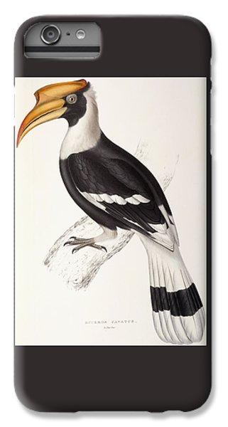 Concave Hornbill IPhone 6 Plus Case