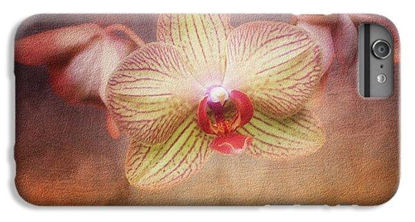 Orchid iPhone 6 Plus Case - Cymbidium Orchid by Tom Mc Nemar