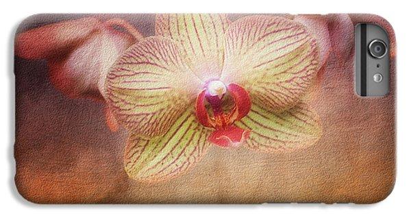 Cymbidium Orchid IPhone 6 Plus Case by Tom Mc Nemar