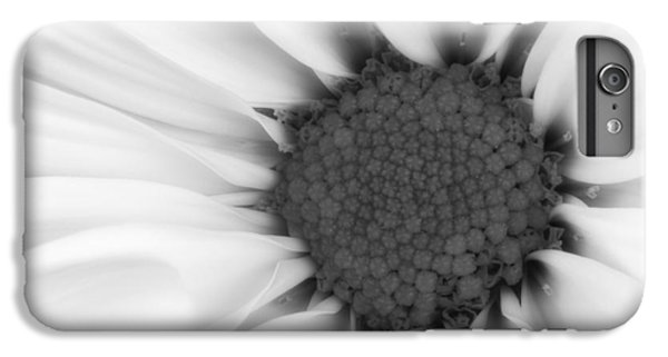 Daisy iPhone 6 Plus Case - Daisy Flower Macro by Tom Mc Nemar