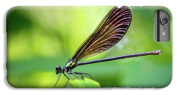 IPhone 6 Plus Case featuring the photograph Dark Damsel by Bill Pevlor