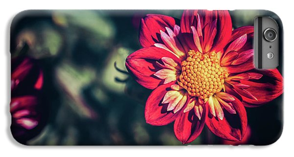 Darling Dahlia IPhone 6 Plus Case
