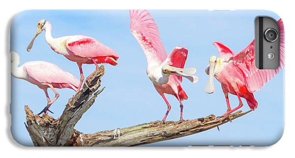 Day Of The Spoonbill  IPhone 6 Plus Case