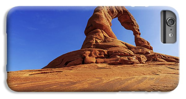 Nature Trail iPhone 6 Plus Case - Delicate Perspective by Chad Dutson
