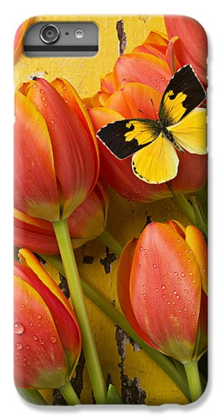 Beautiful iPhone 6 Plus Case - Dogface Butterfly And Tulips by Garry Gay