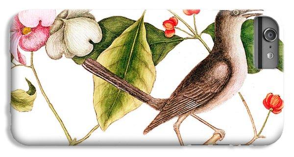 Dogwood  Cornus Florida, And Mocking Bird  IPhone 6 Plus Case by Mark Catesby