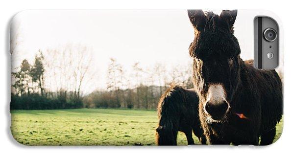 Donkey And Pony IPhone 6 Plus Case
