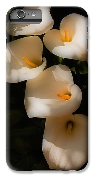 Dreamy Lilies IPhone 6 Plus Case by Mick Burkey