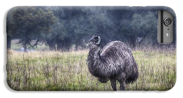 Early Morning Stroll IPhone 6 Plus Case by Douglas Barnard