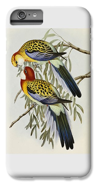 Eastern Rosella IPhone 6 Plus Case by John Gould