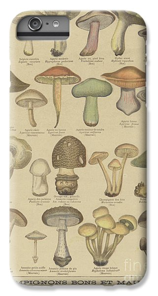 Edible And Poisonous Mushrooms IPhone 6 Plus Case