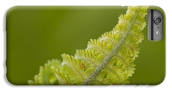 Elegant Fern. IPhone 6 Plus Case
