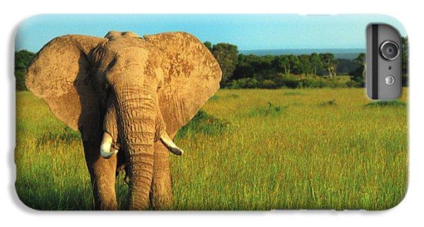 Elephant IPhone 6 Plus Case by Sebastian Musial