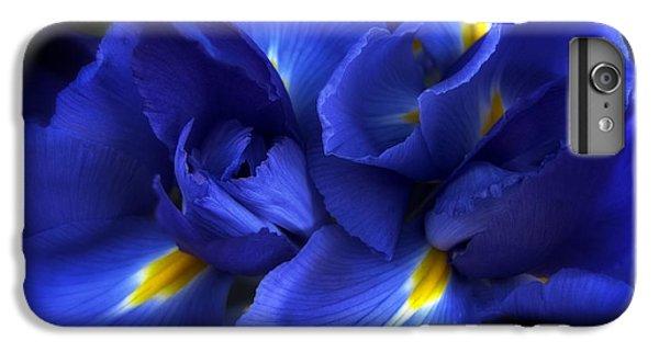 Evening Iris IPhone 6 Plus Case by Jessica Jenney