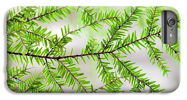 IPhone 6 Plus Case featuring the photograph Evergreen Abstract by Christina Rollo