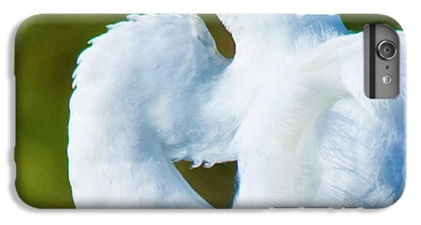 Eye-catching IPhone 6 Plus Case by Betsy Knapp