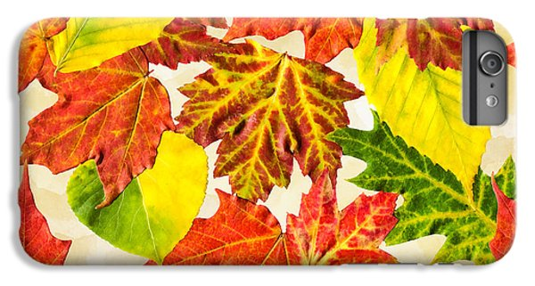 IPhone 6 Plus Case featuring the mixed media Fall Leaves Pattern by Christina Rollo