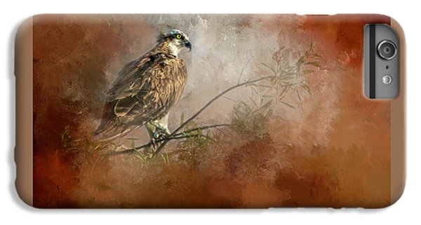 Osprey iPhone 6 Plus Case - Farsighted Wisdom by Marvin Spates