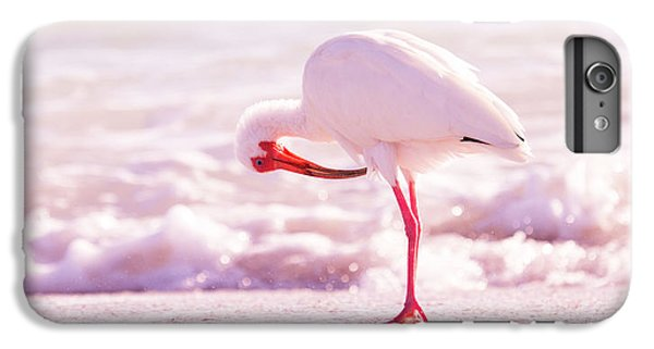 Ibis iPhone 6 Plus Case - Feather Out Of Place by Betsy Knapp