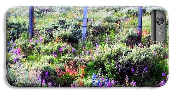 Field Of Wildflowers IPhone 6 Plus Case