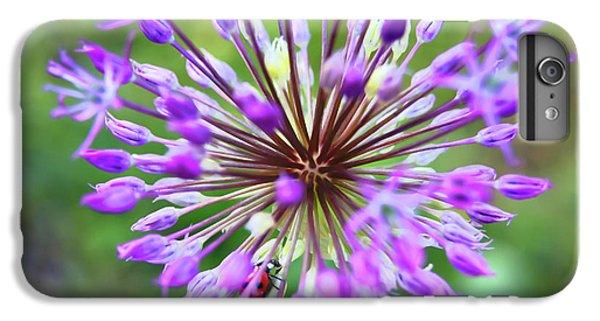 Find Ladybug IPhone 6 Plus Case