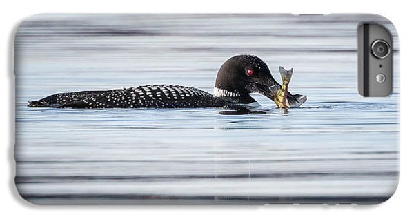 Fish For Lunch IPhone 6 Plus Case by Bill Wakeley