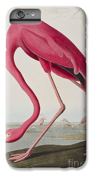 Flamingo IPhone 6 Plus Case by John James Audubon