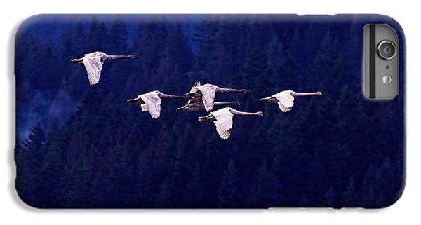 Flight Of The Swans IPhone 6 Plus Case