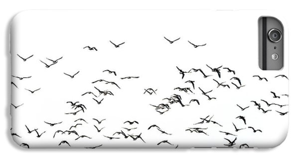Flock Of Beautiful Migratory Lapwing Birds In Clear Winter Sky I IPhone 6 Plus Case by Matthew Gibson