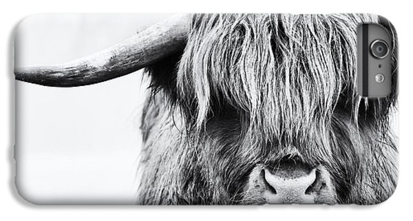 Fluffys Mate IPhone 6 Plus Case by Tim Gainey