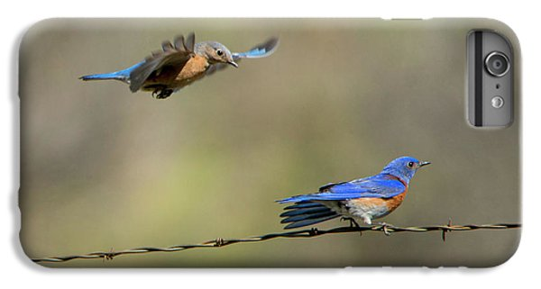 Flying To You IPhone 6 Plus Case by Mike Dawson