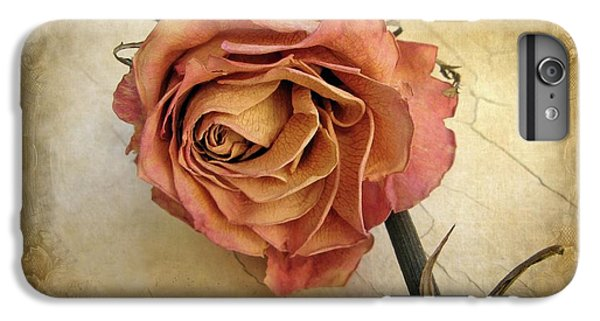Rose iPhone 6 Plus Case - For You by Jessica Jenney