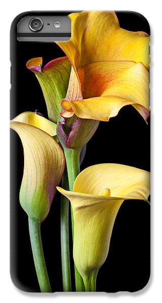 Four Calla Lilies IPhone 6 Plus Case by Garry Gay