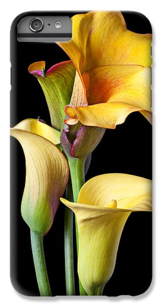 Lily iPhone 6 Plus Case - Four Calla Lilies by Garry Gay