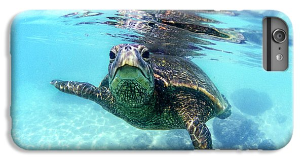 friendly Hawaiian sea turtle  IPhone 6 Plus Case by Sean Davey
