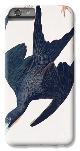 Frigate Penguin IPhone 6 Plus Case by John James Audubon