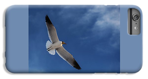 Glider IPhone 6 Plus Case by Don Spenner