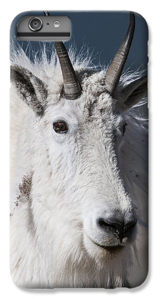 Goat Portrait IPhone 6 Plus Case