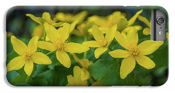 IPhone 6 Plus Case featuring the photograph Gold In The Marsh by Bill Pevlor