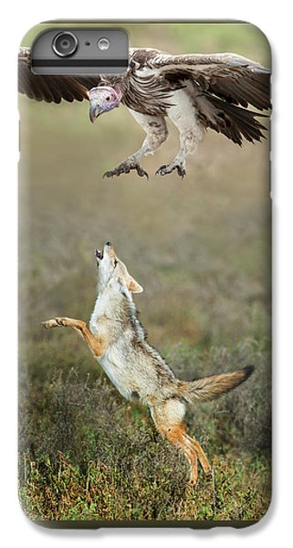 Golden Jackal, Canis Aureus, Leaping At Vulture IPhone 6 Plus Case
