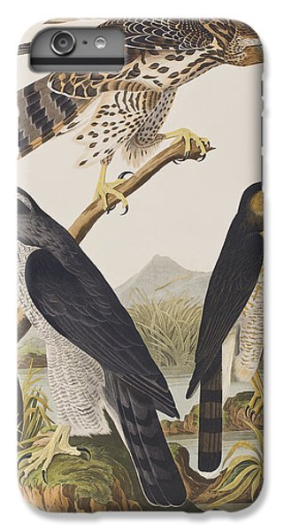 Goshawk And Stanley Hawk IPhone 6 Plus Case by John James Audubon