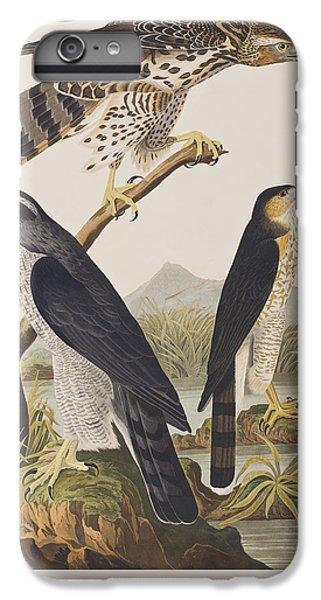 Goshawk And Stanley Hawk IPhone 6 Plus Case by John James Audubon