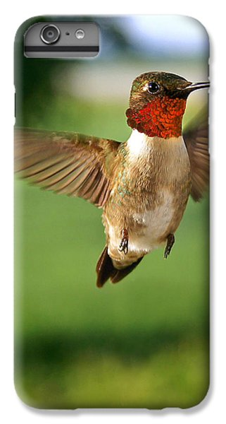 Grand Display IPhone 6 Plus Case by Bill Pevlor