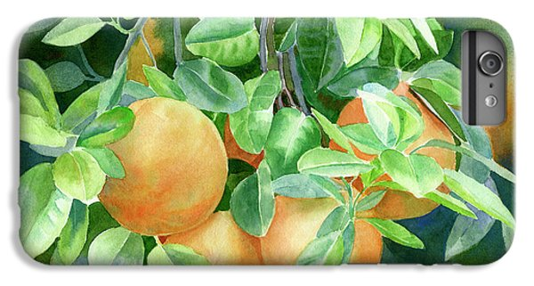 Grapefruit With Background IPhone 6 Plus Case by Sharon Freeman